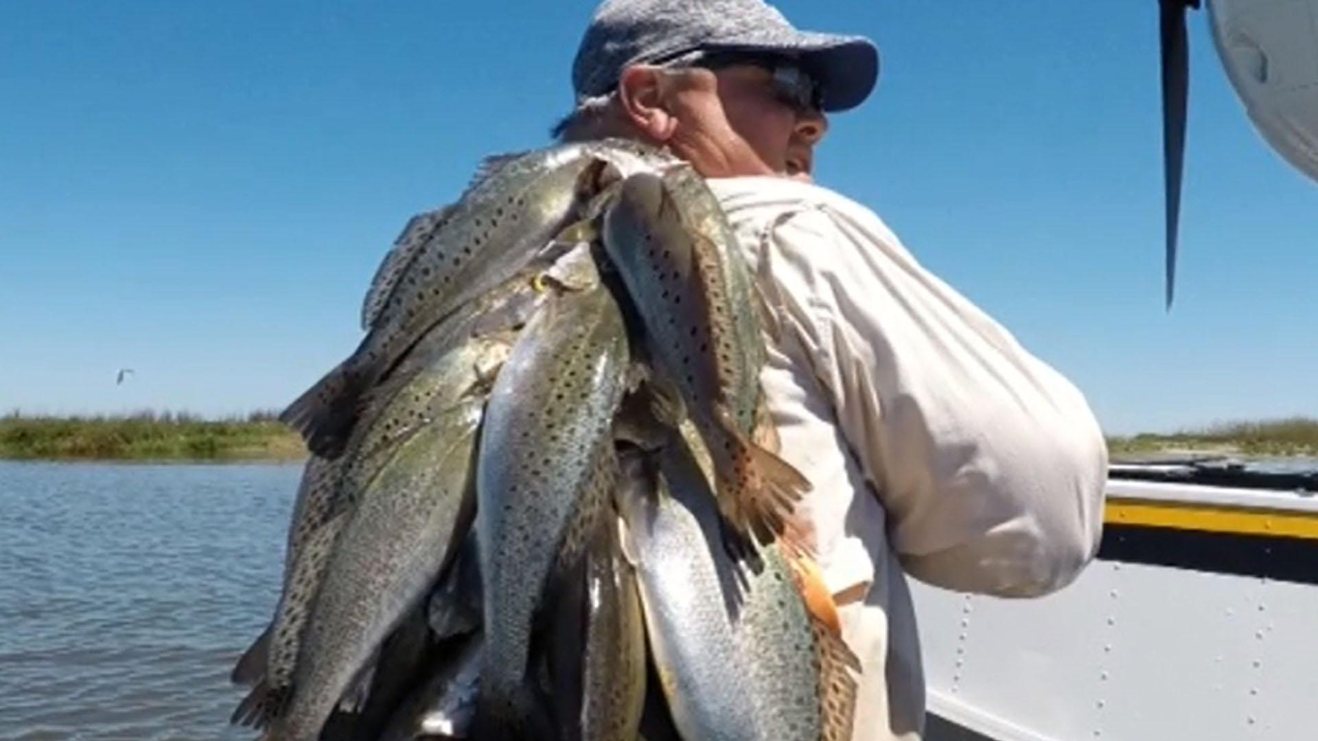 Chandeleur Island Fishing Report